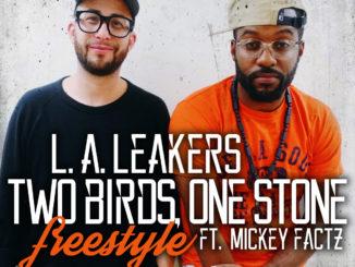 2birds1stone_freestyle