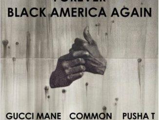 common-black-america-remix