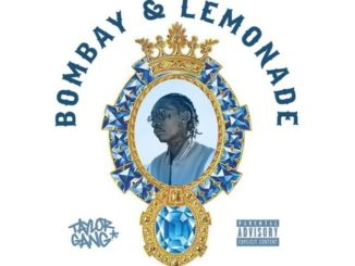 bombay-and-lemonade-jpg-pagespeed-ce-d8qludw5ek