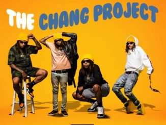 The-Chang-Project1
